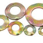 แหวนรอง DIN 6795